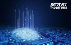 中国芯片产业深度调查:紫光欲打破三星等巨头垄断