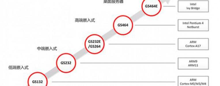 龙芯宣布两款CPU核开源:意欲何为?